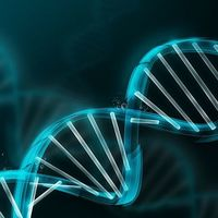 La vida tenía más de un secreto: encuentran nuevas formas de ADN que van más allá de la doble hélice