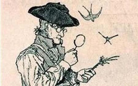 El hombre que descubrió más especies vegetales