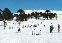 A la nieve en agosto: Caviahue (VI)