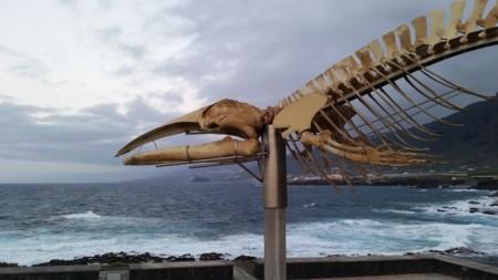 Costa Sibora Tenerife