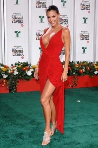 Ninel Conde. Latin Billboard 2009: todos los looks