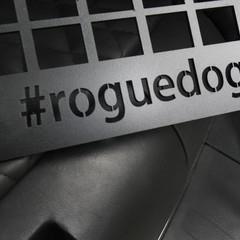 Foto 19 de 19 de la galería nissan-rogue-dogue en Motorpasión México