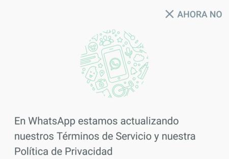 ¿Me quedaré sin WhatsApp si no he aceptado sus nuevos términos y condiciones?