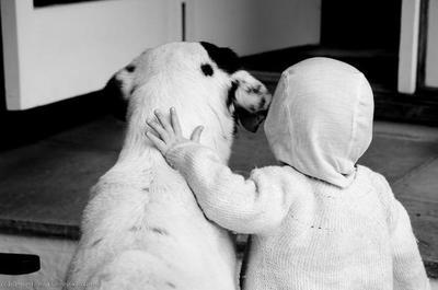 Perros, los mejores amigos de los niños hospitalizados
