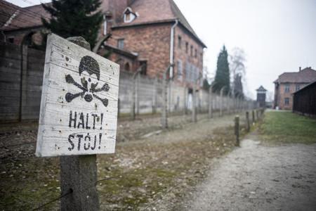 Auschwitz y la insoportable levedad de las redes sociales