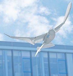 Un nuevo robot pájaro