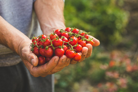alimentos-bio-ecologicos-aitor-sanchez