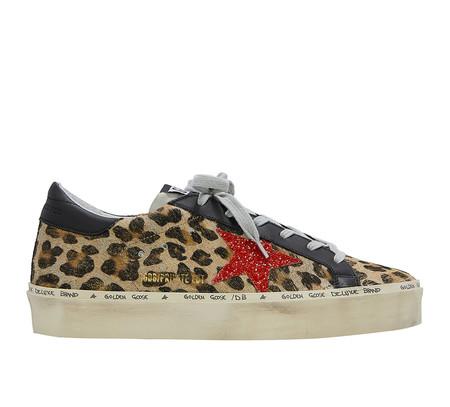Leopardo Rocky