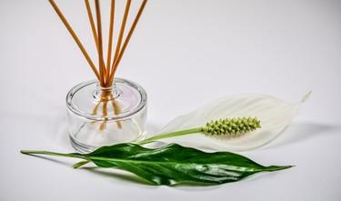 Encuentra fragancias y aromas para el hogar a mitad de precio Cazando Gangas