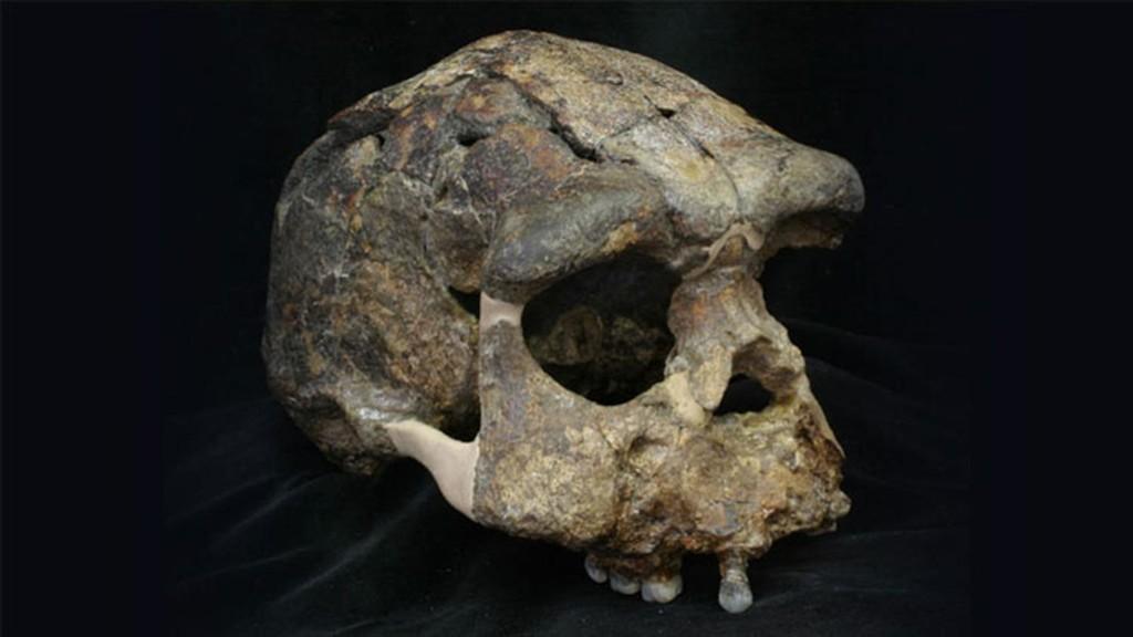 Algunos humanos actuales portan ADN de un ancestro arcaico y desconocido