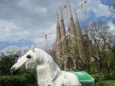 Feelipo, el caballo que te brinda la oportunidad de viajar a Eslovenia