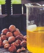Aceite de avellana Chilena