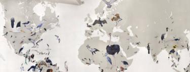 Wall of Birds: el mapa que recorre el fascinante universo de las aves del mundo a través de los milenios