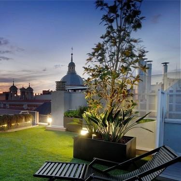 Cuatro claves para poner a punto tu jardín. El paisajista Fernando Pozuelo nos cuenta cómo tener el jardín perfecto
