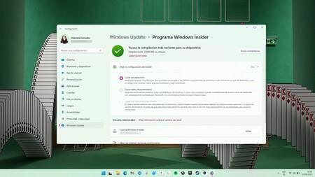 Windows 11 Programa Insider