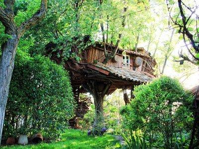Una de las cabañas en los árboles más rústicas del mundo está en Cuenca