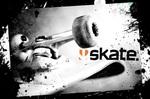 skate-3