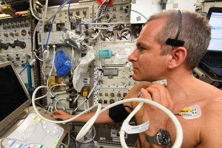 Astronauta Arterias