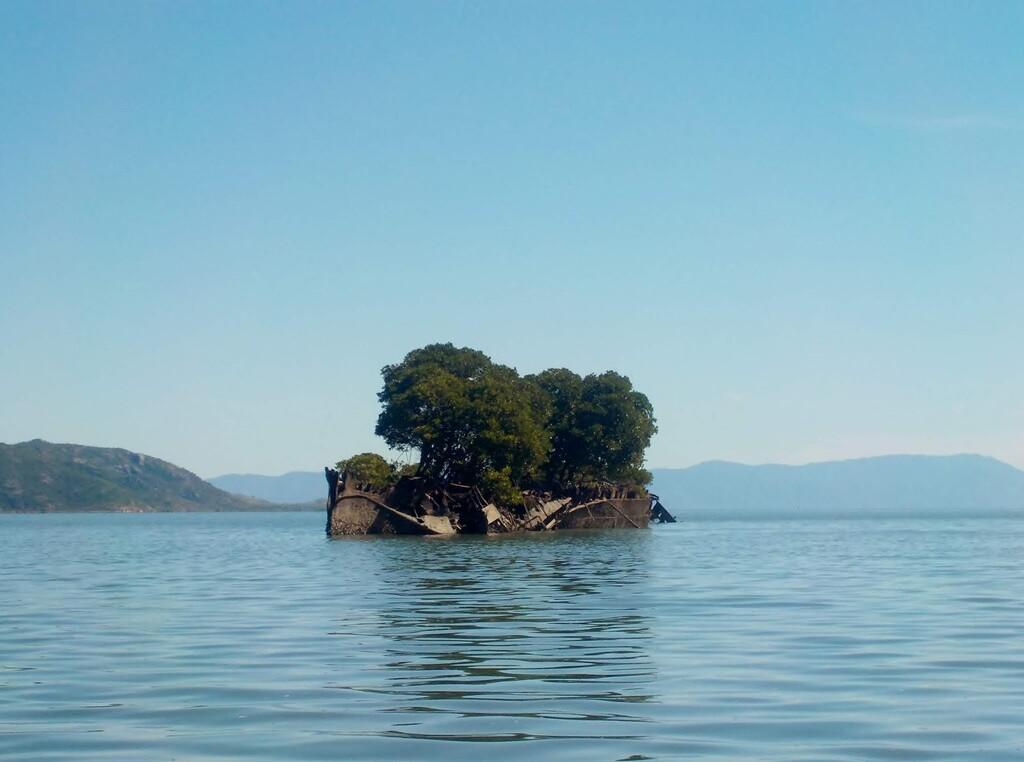 De navío de pasajeros en el siglo XIX a ecosistema