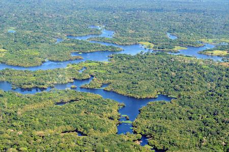 Bolsonaro Amazonas 2