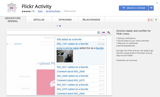 Flickr Activity