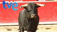 'Frágiles' en Telecinco, las corridas de toros en TVE, Real Madrid TV en la TDT y más, In my Opinion (22)