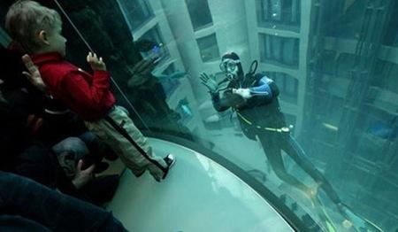 The Radisson Blu Hotel's 82-Foot Aquadom vista ascensor