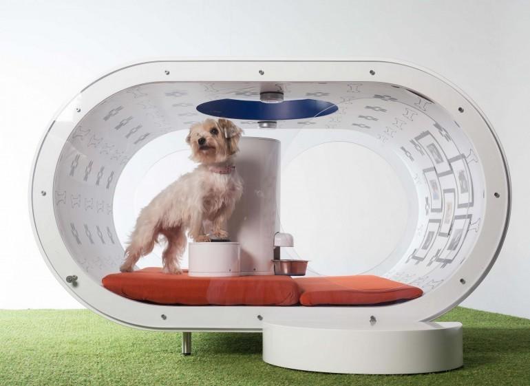 Foto de Samsung Dream Doghouse (10/11)