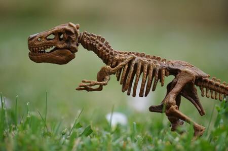 La idea de que los dinosaurios llevaban 10 millones años extinguiéndose antes del meteorito cobra fuerza, según un estudio con modelos computacionales