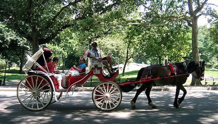 Viajar en carruaje por Central Park