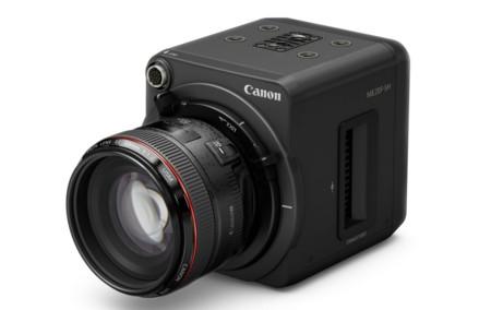 Esta cámara de Canon ve a oscuras, y su secreto es su increíble ISO 4.560.000
