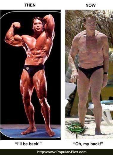 Los músculos en cifras