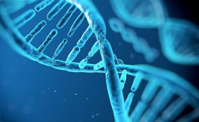 Ni Blu-rays ni SSDs: El ADN conserva los datos durante millones de años