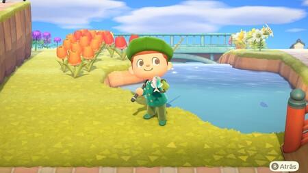 Animal Crossing: New Horizons: lista con todos los peces de noviembre