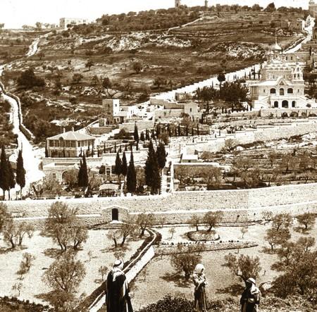 El Monte De Los Olivos En Jerusalen