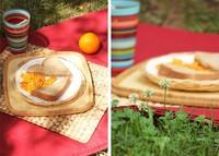 Llega el buen tiempo ¿nos vamos de picnic?
