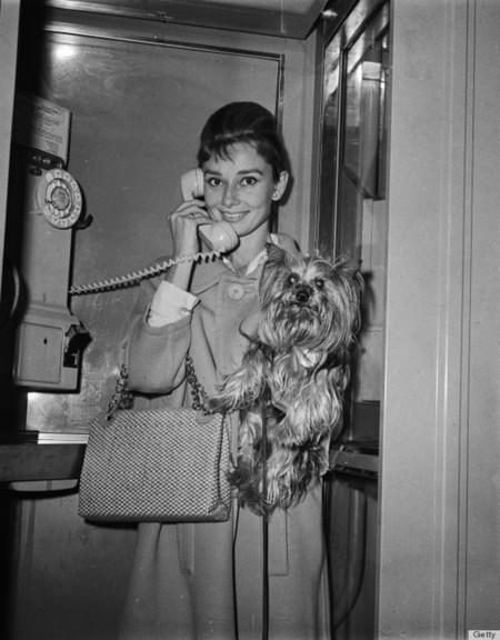 O Audrey Hepburn 570