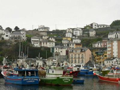 La historia de un gran lobo dio nombre a una ciudad asturiana: Luarca
