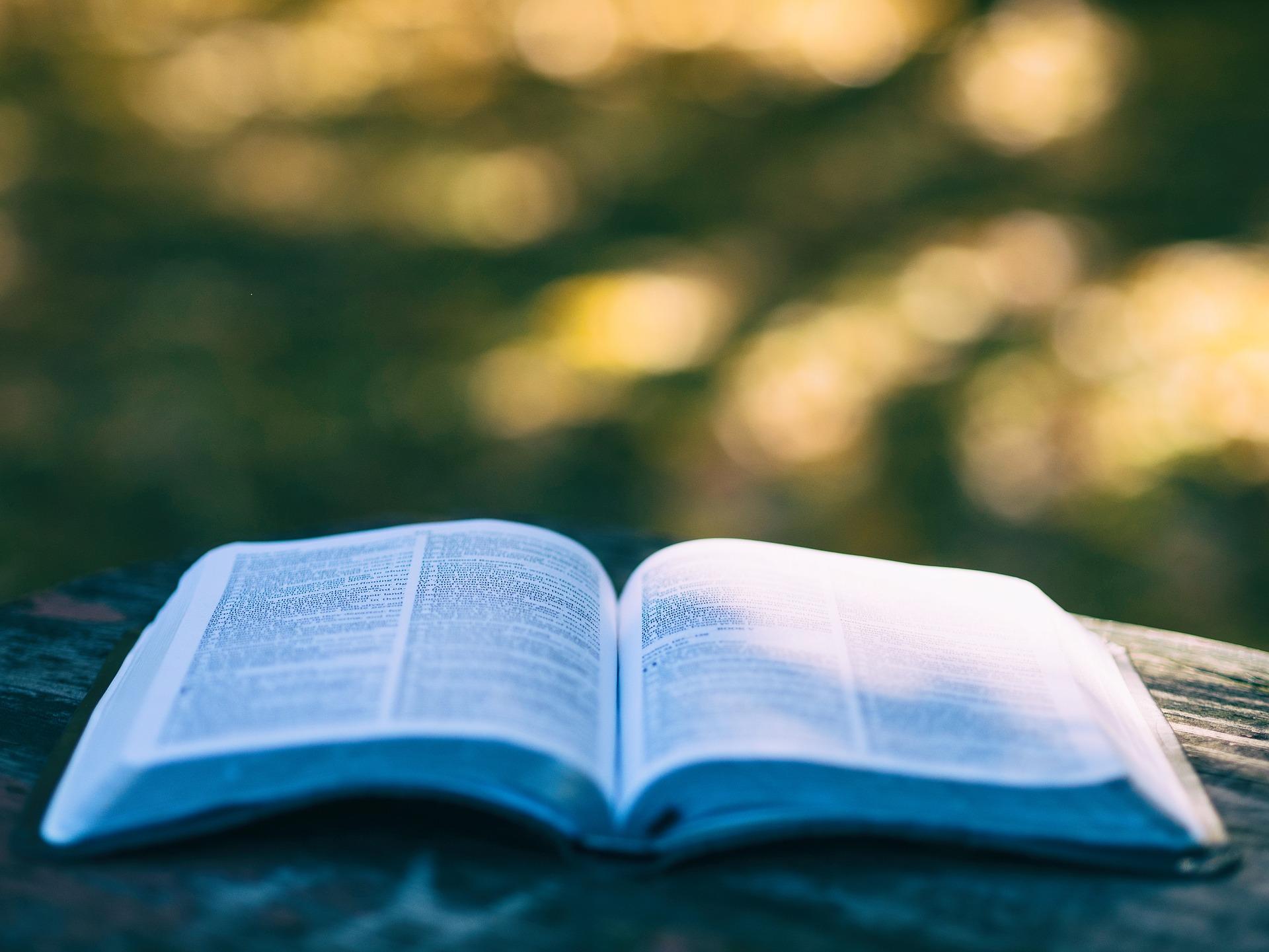 Como dejar fumar el libro del lapiaz leer