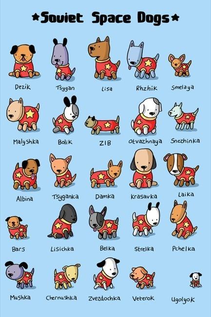 Los perros que formaron parte del programa espacial soviético en un cartel para decorar