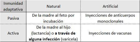 Tabla De Inmunizacion