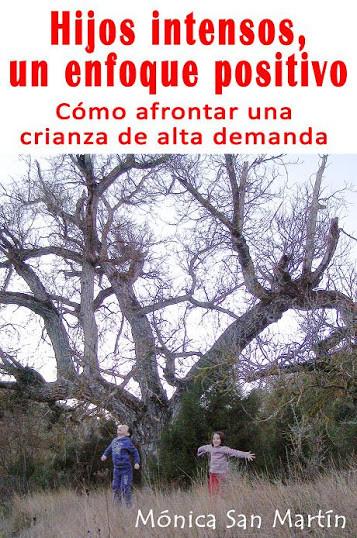 """""""Hijos intensos, un efoque positivo"""", libro de Mónica San Martín sobre los niños de alta demanda"""