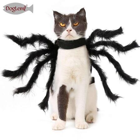 Disfraces De Halloween Para Perros