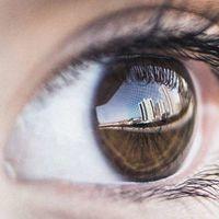 Cómo un examen de ojos puede darnos información sobre la calidad de la audición de una persona