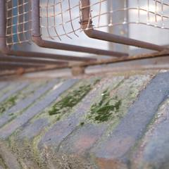 Foto 2 de 29 de la galería muestras-fujifilm-x-t30 en Xataka Foto