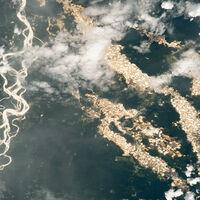 """Los """"ríos de oro"""" de Perú, la imagen que revela el alcance de la minería ilegal en el Amazonas"""