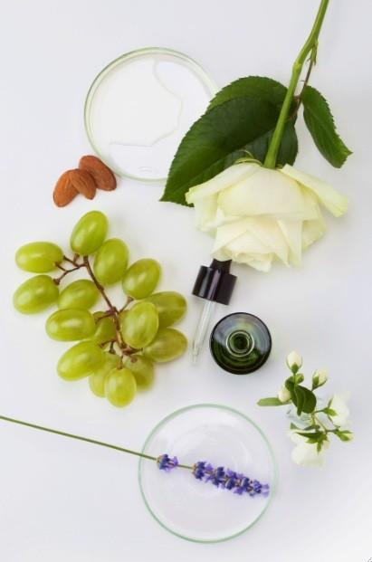 caudalie_ingredientes-1.jpg