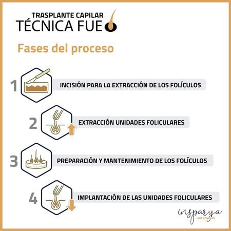 Infografia Fue