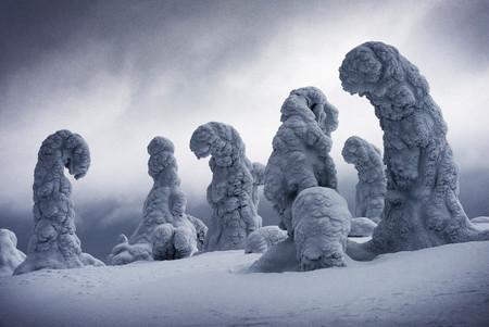 Frozen Giants Ignacio