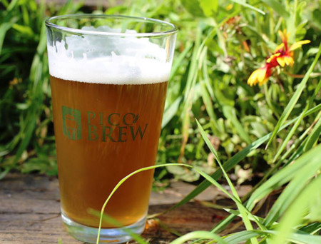 Cerveza PicoBrew